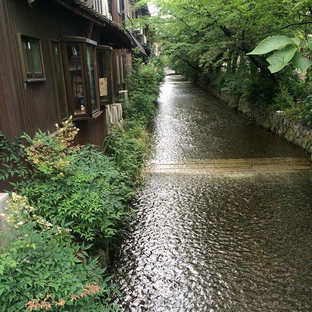 """高瀬川 Takasegawa River #river #kyoto #japan #일본 #쿄토 #여행 #日本 #京都 #旅行"" Photo taken by @ishideo on Instagram, pinned via the InstaPin iOS App! http://www.instapinapp.com (06/19/2015)"