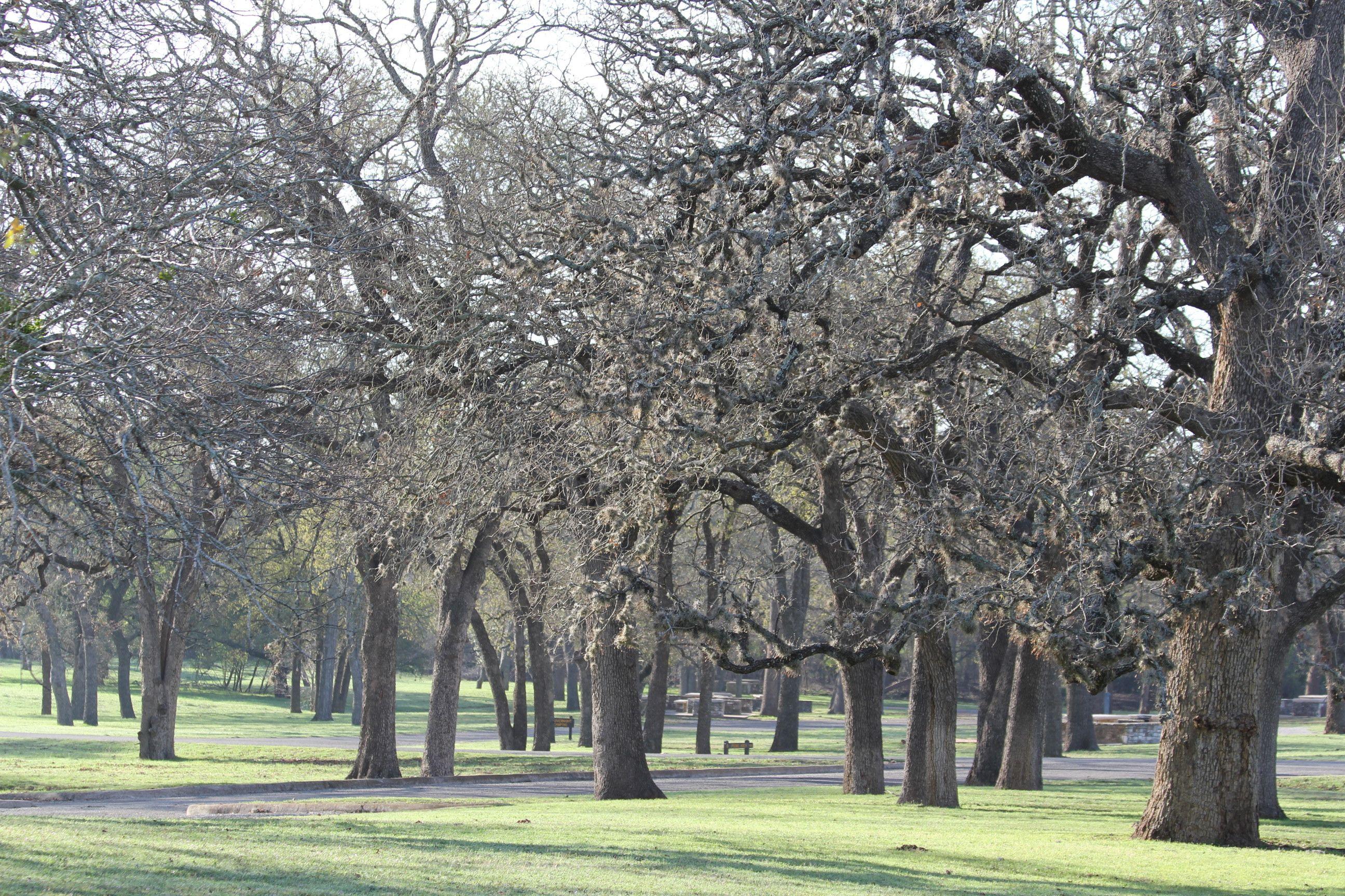 LBJ Ranch, Texas Copyright Mimi Yu