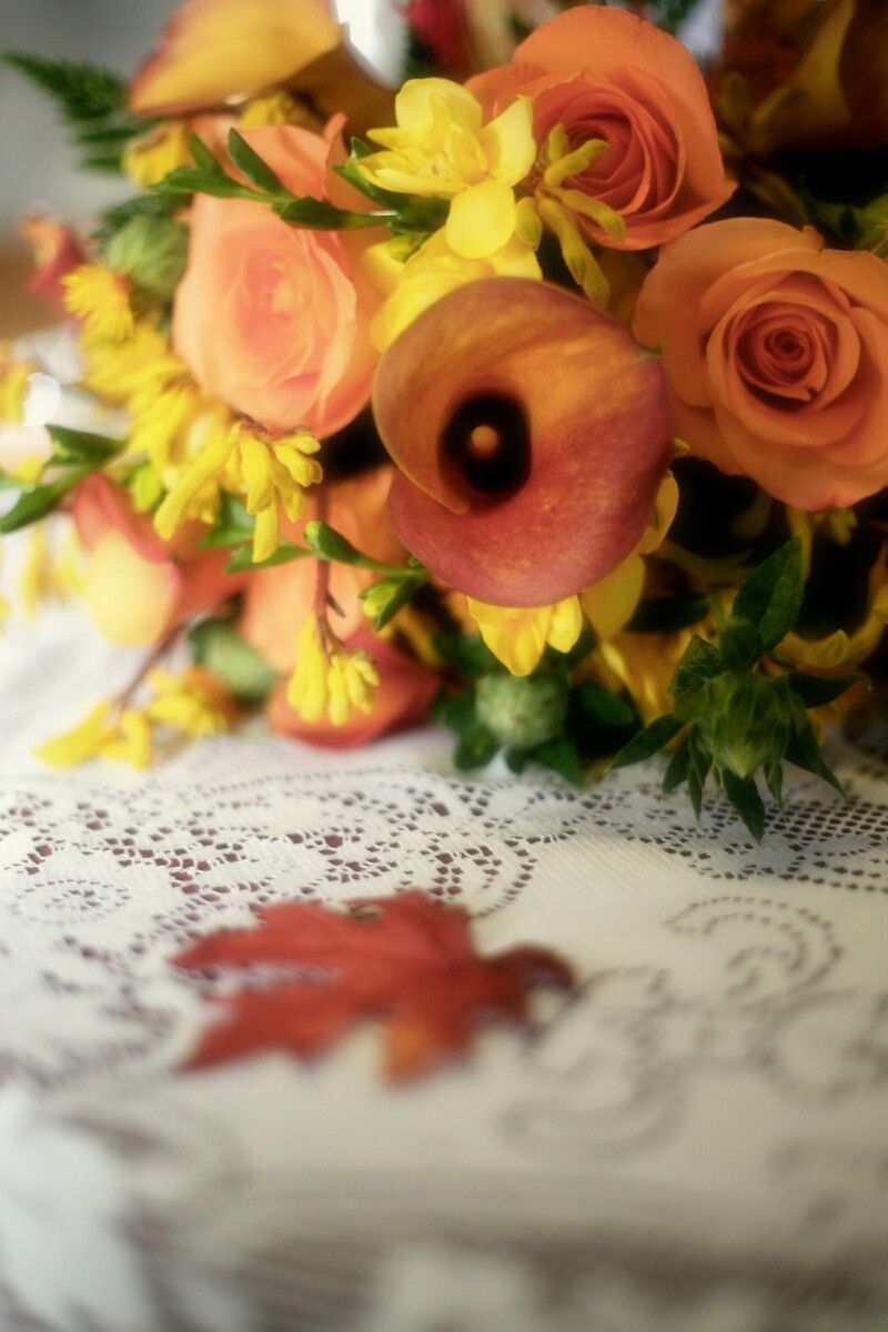 Fall outside wedding decoration ideas  Like the color scheme but would maybe add more red to tie in