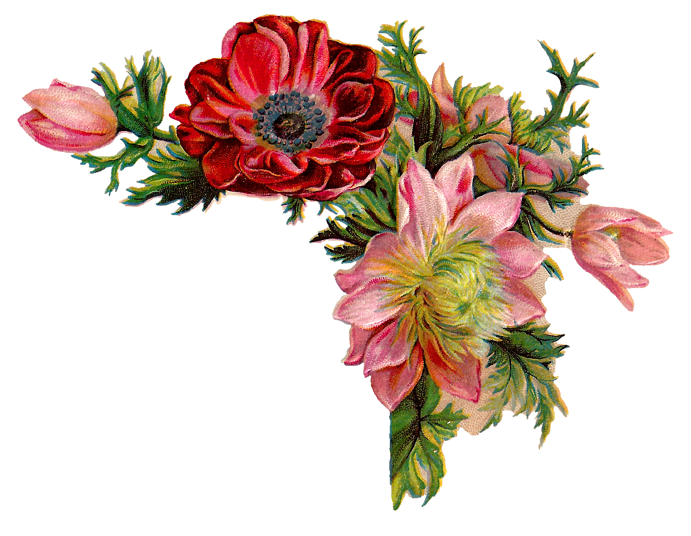 Antique Images Free Digital Flower Of Corner Design With Red And Pink Flowers
