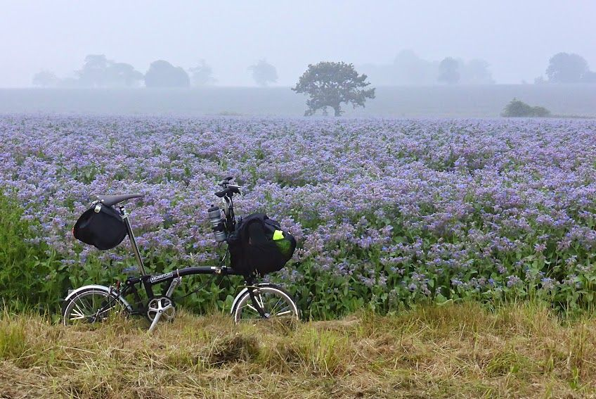 Beautiful views for our fundraising cyclist!