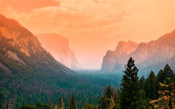 Download Wallpapers 4k Yosemite Valley Fog Autumn American Landmarks Yosemite National Park Forest California Usa America Besthqwallpapers Com Yosemite National Park Photography National Parks Photography California National Parks