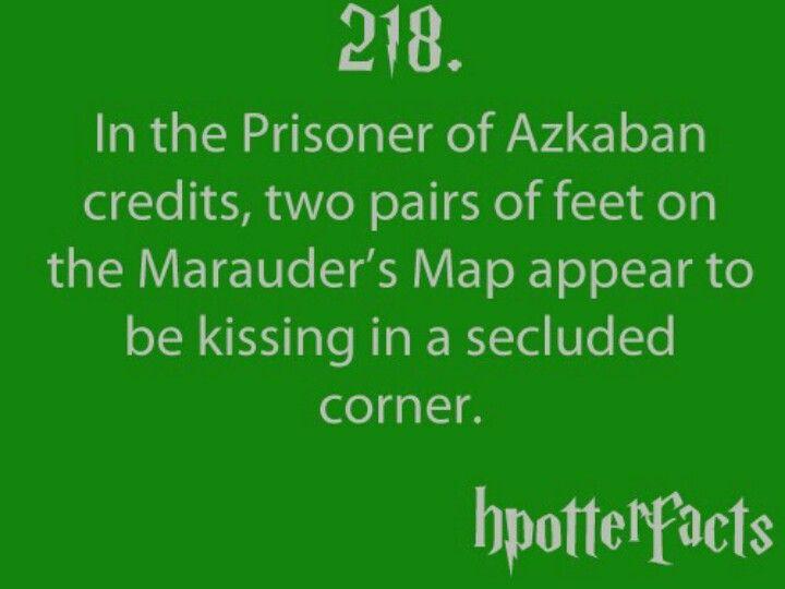 Harry Potter Harry Potter Facts Potter Facts Harry Potter Fan
