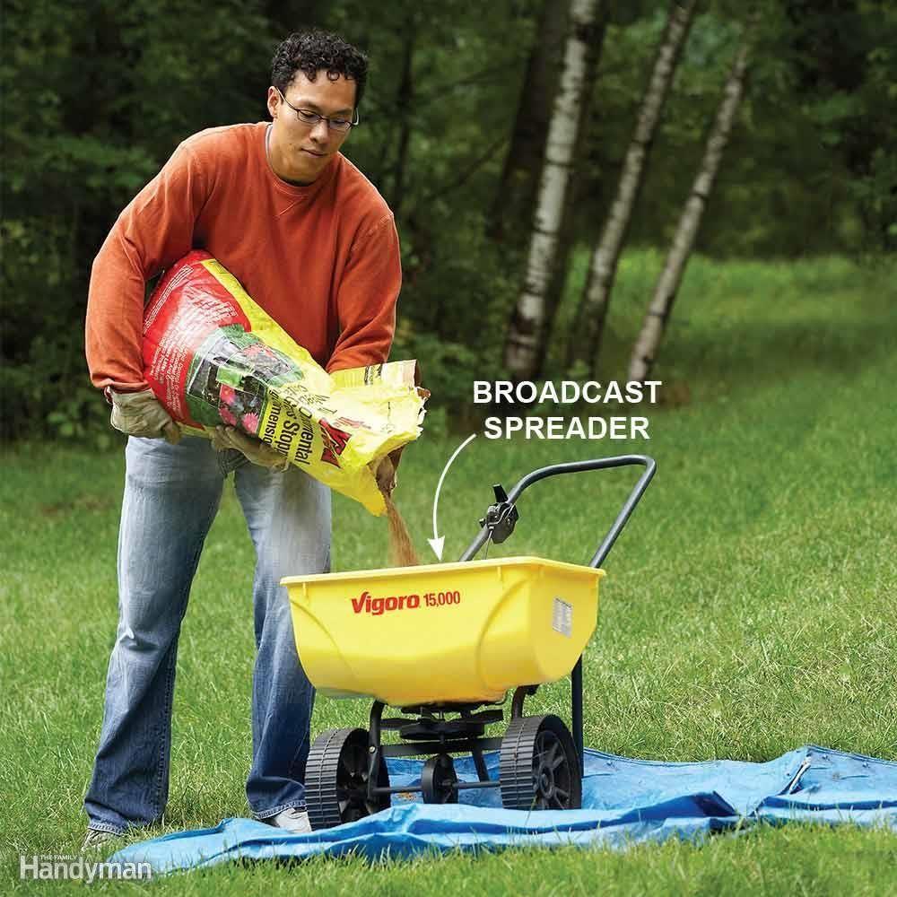 Kill broadleaf weeds early season lawn sprinklers pinterest