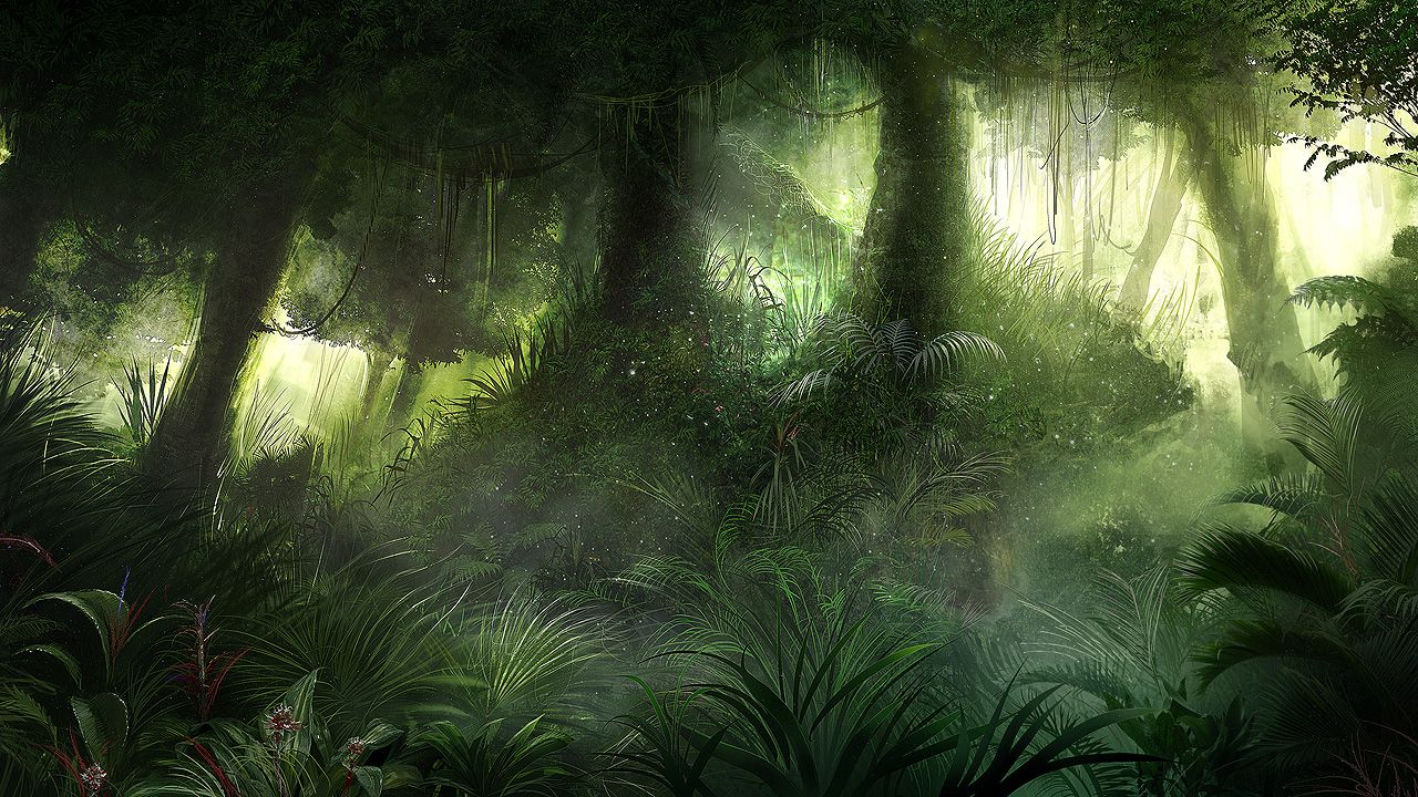 download jungle 1920x1080 1920x1080 - photo #26