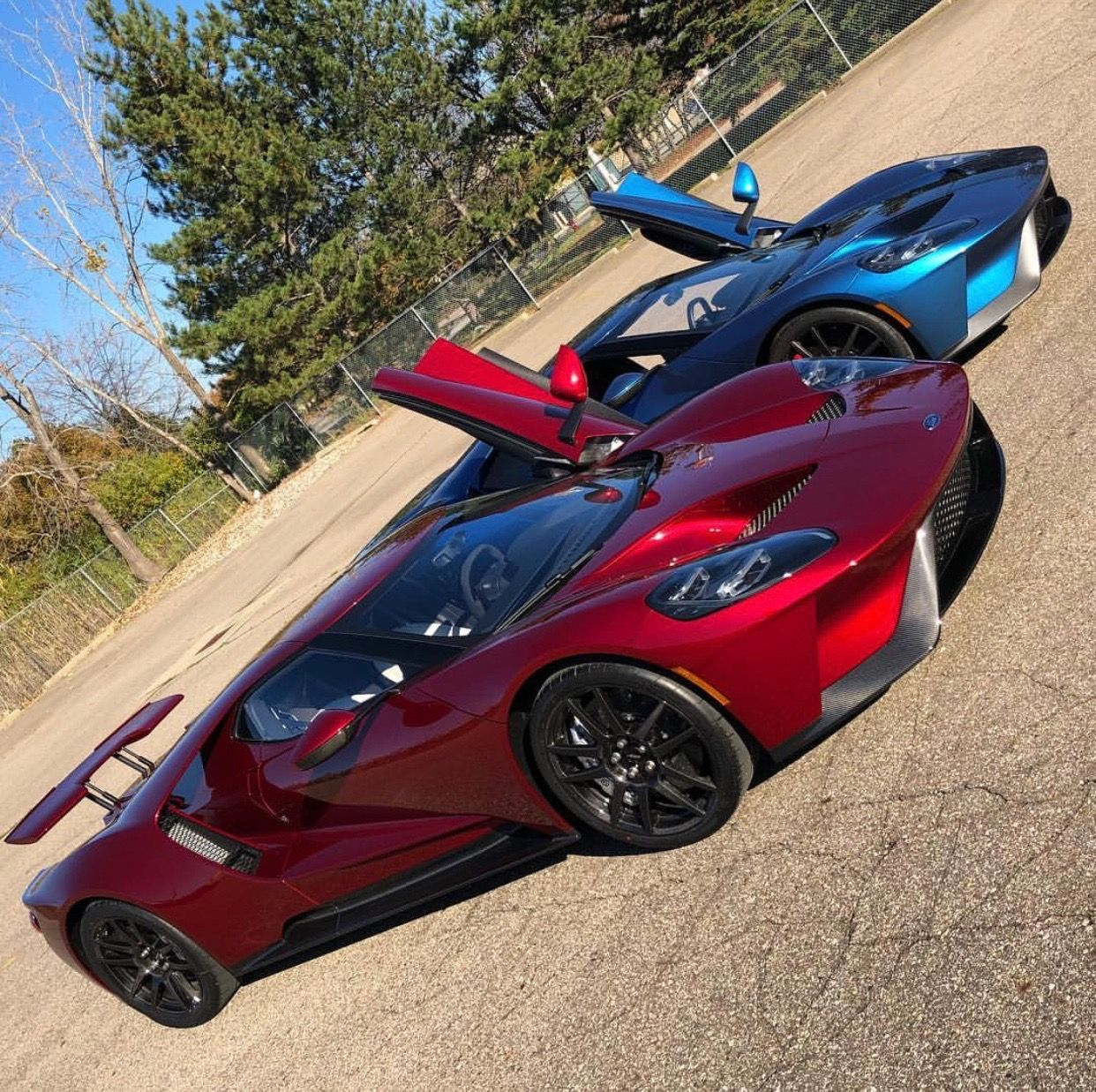 Exotic Car Rental Ford Gt: Two Ford GT's Painted In Liquid Red And Liquid Blue Photo