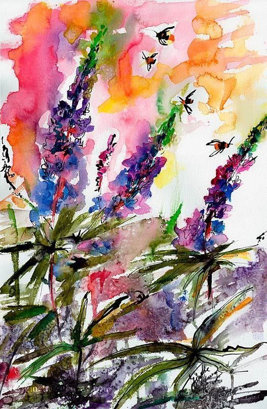 Lupines Flower Watercolors and Ink Lupines Flower