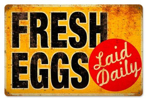Eggs Laid Daily Food And Drink Vintage Metal Sign