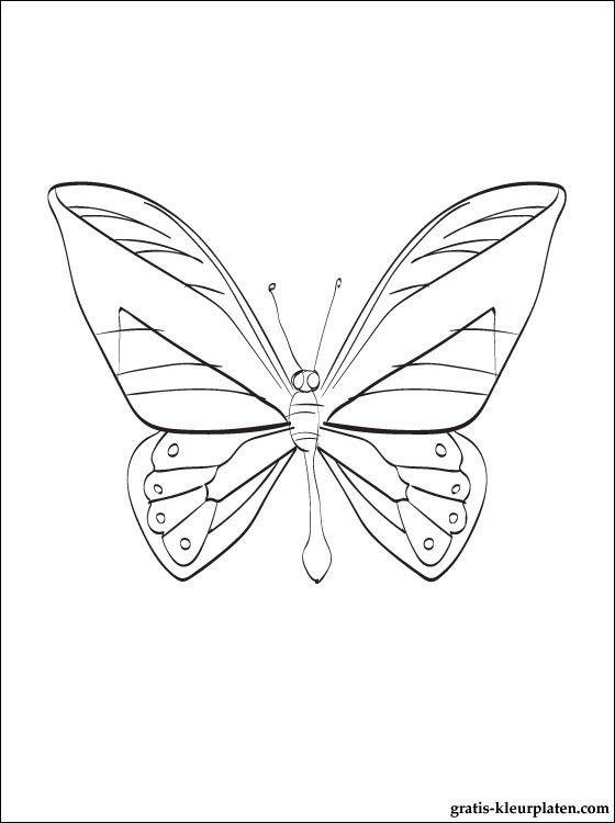 kleurplaat vlinder gratis kleurplaten kleurplaten