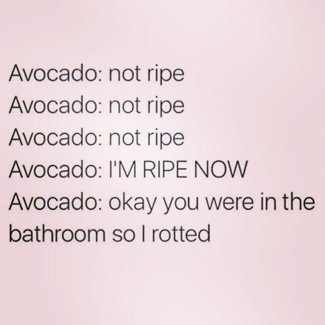 Madstonandcoetsycom Funny Healthy Eating Avocado Recipes