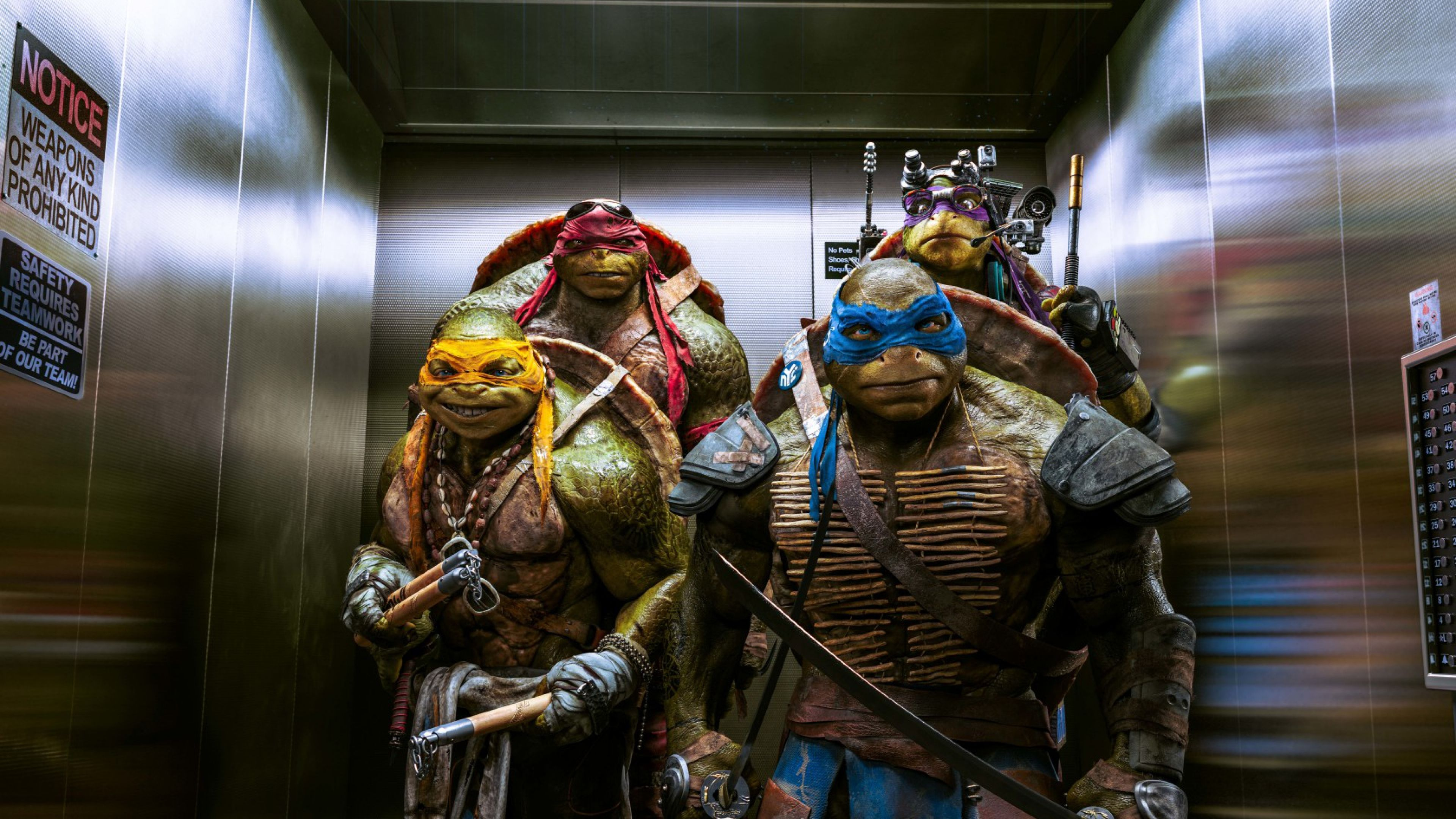 Teenage Mutant Ninja Turtles Wallpaper Wallpaperesque HD