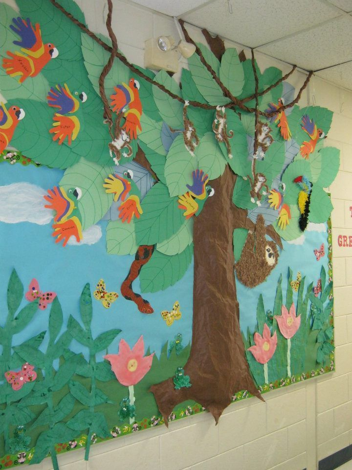 Pin by Moe Bringman on Classroom Tree   Rainforest theme, Rainforest