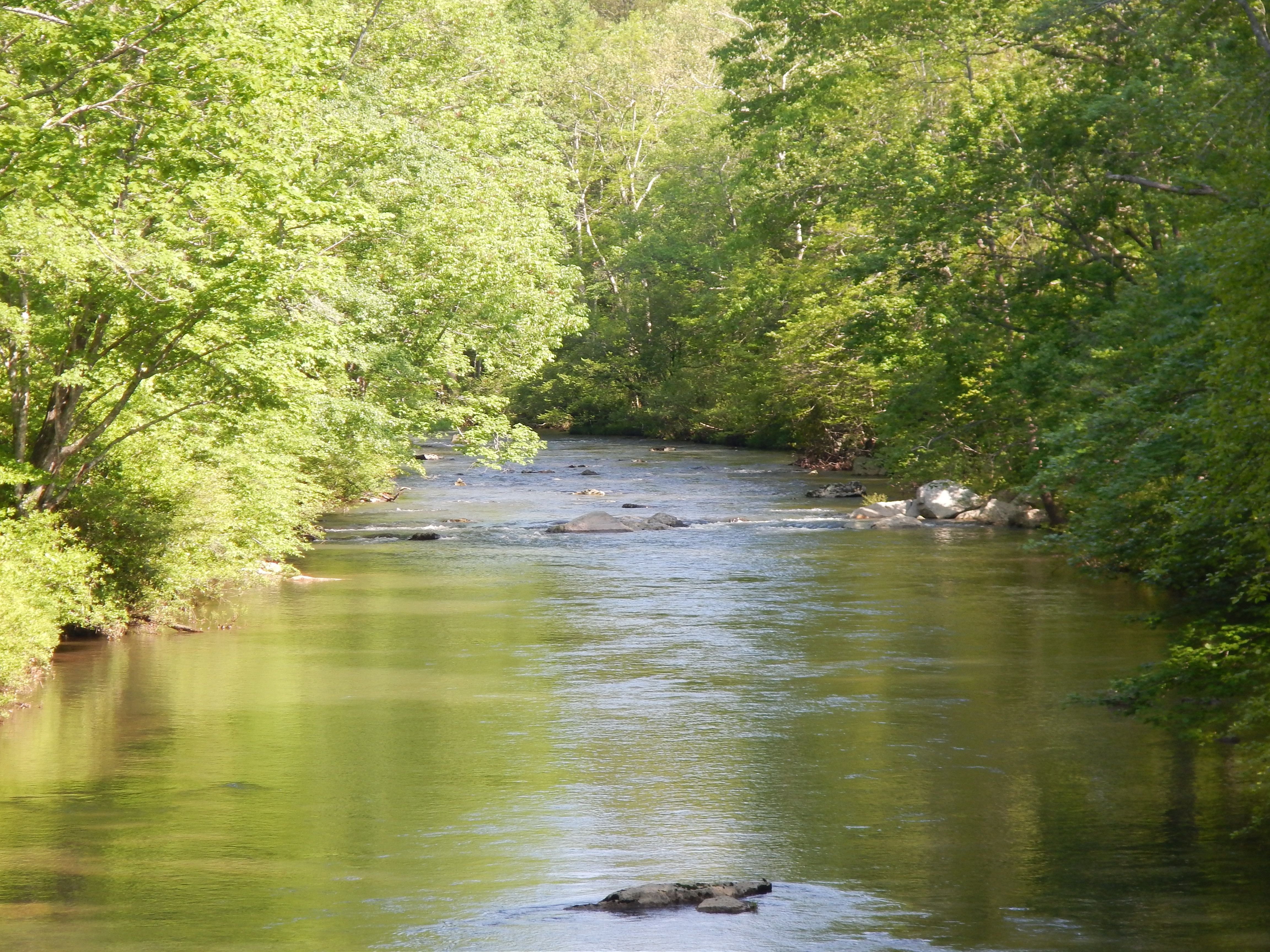 Day 9 - A view downstream as the Appalachian Trail crosses Kimberling Creek in the Jefferson National Forest.