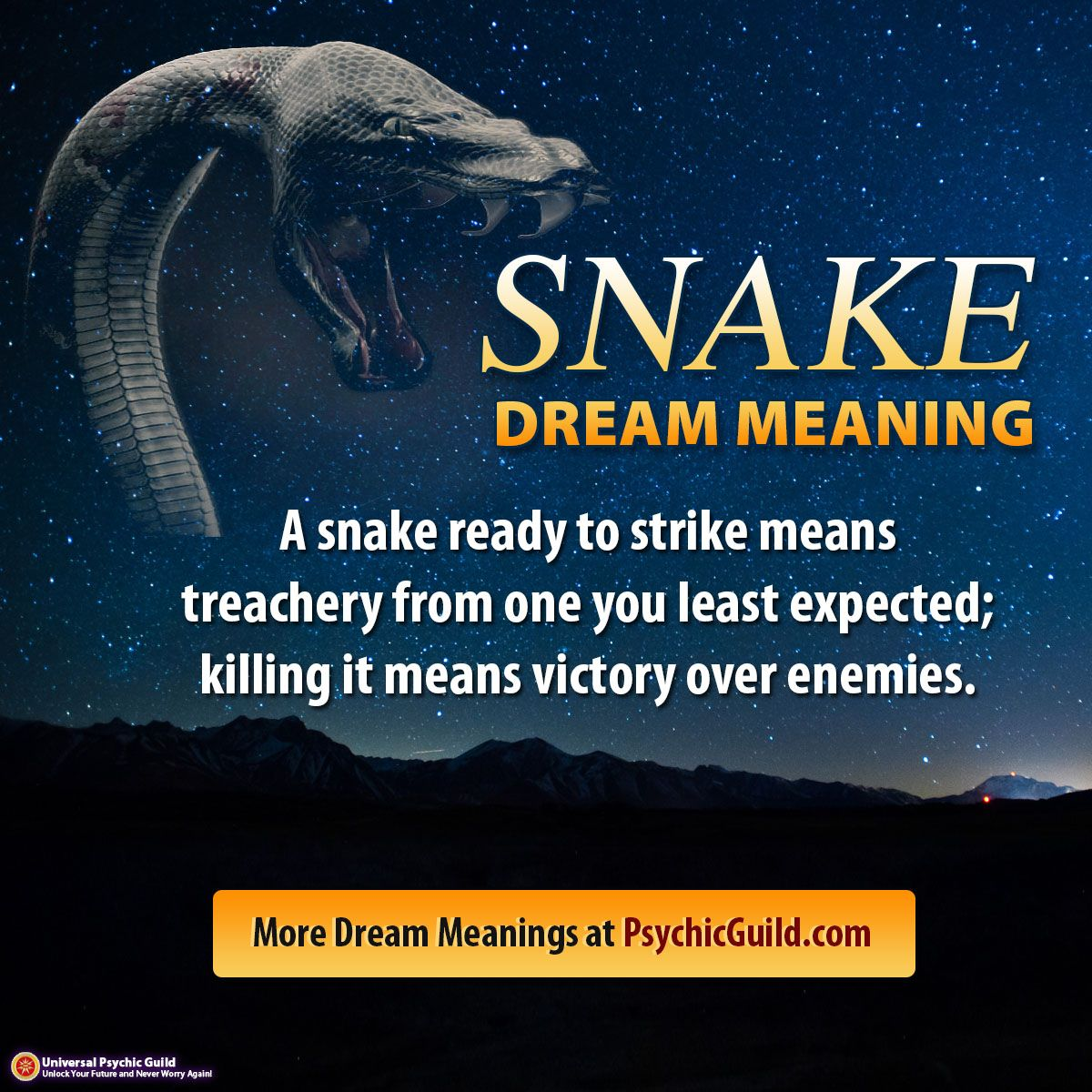 Dreammeaning a snake ready to strike means treachery from one dream meanings dreammeaning a snake ready to strike means treachery from one you least biocorpaavc Image collections