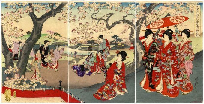 Chikanobu Cherry Blossom Ukiyo E Ukiyoe Gallery Shukado Japanese Art Prints Japanese Prints Japanese Art