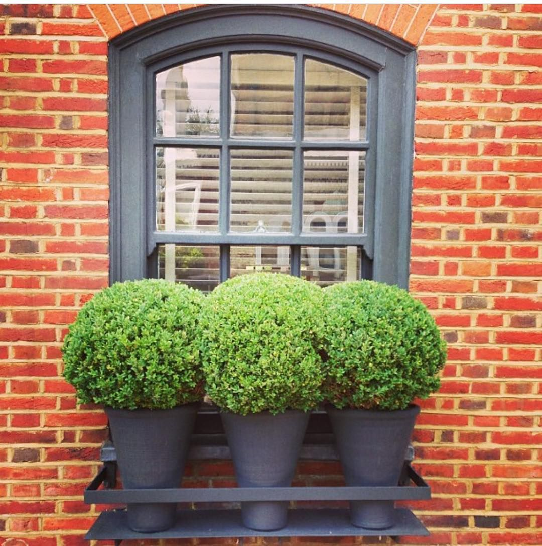 How amazing are these spun metal pots and casing as a window box.