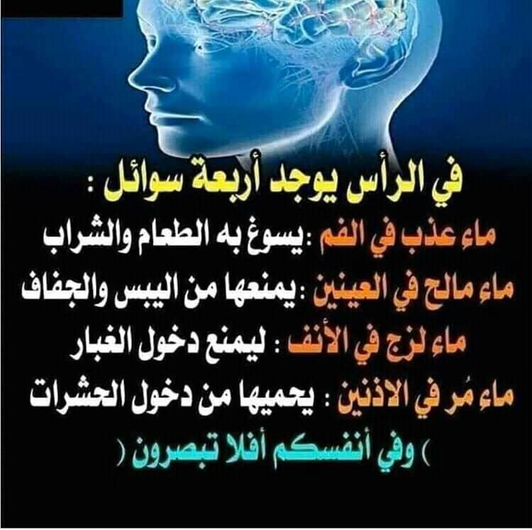 سبحان الله والحمد لله ولا إله إلا الله والله أكبر Instagram Posts Instagram Instagram Photo