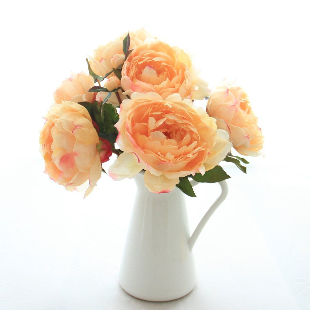 Peach Classic Peony Bunch Of 6 Stems Pampkin Deco Pinterest