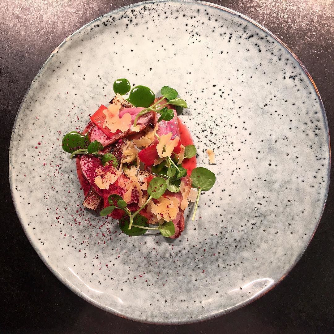 Duck and watercress salad with rhubarb  salsify and  walnut by selfmade1802