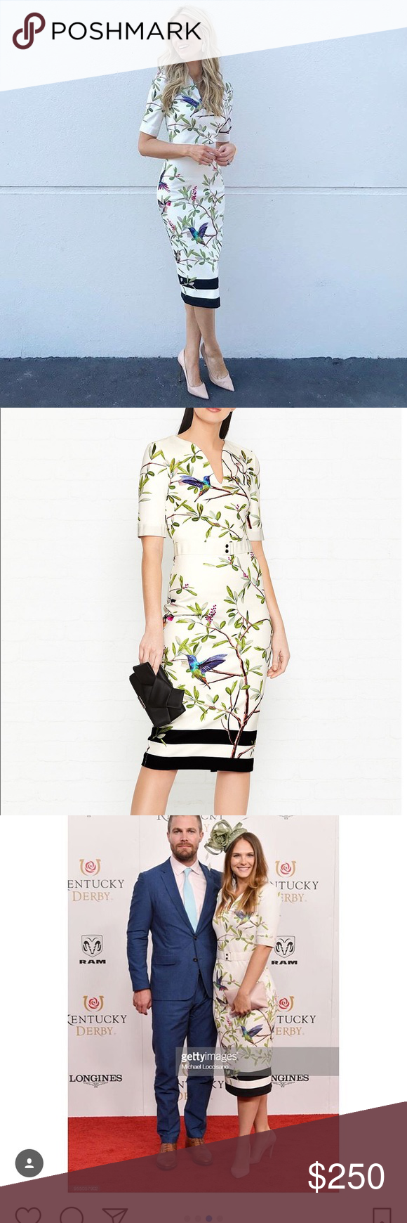 eed412380242 Ted Baker Evrely Highgrove Pencil Dress You re sure to cut a striking  silhouette with