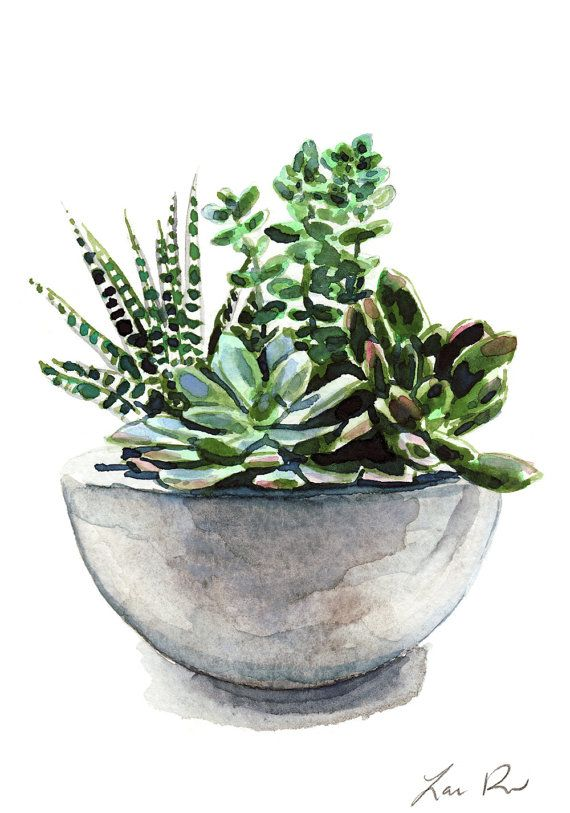 Photo of Succulent Garden Concrete Planter Cactus Art Print Watercolor Painting Wall Decor Botanical Pretty Cute Canvas Housewarming Gift for Her