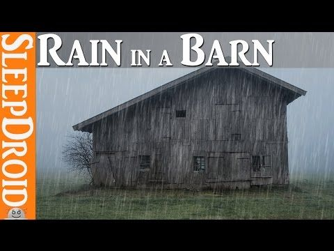 10 Hours Of Seaside Rainstorm And Wind Storm Sounds For Sleeping Rain And Windstorm By The Sea Youtube How To Fall Asleep Storm Sounds Sound Sleep