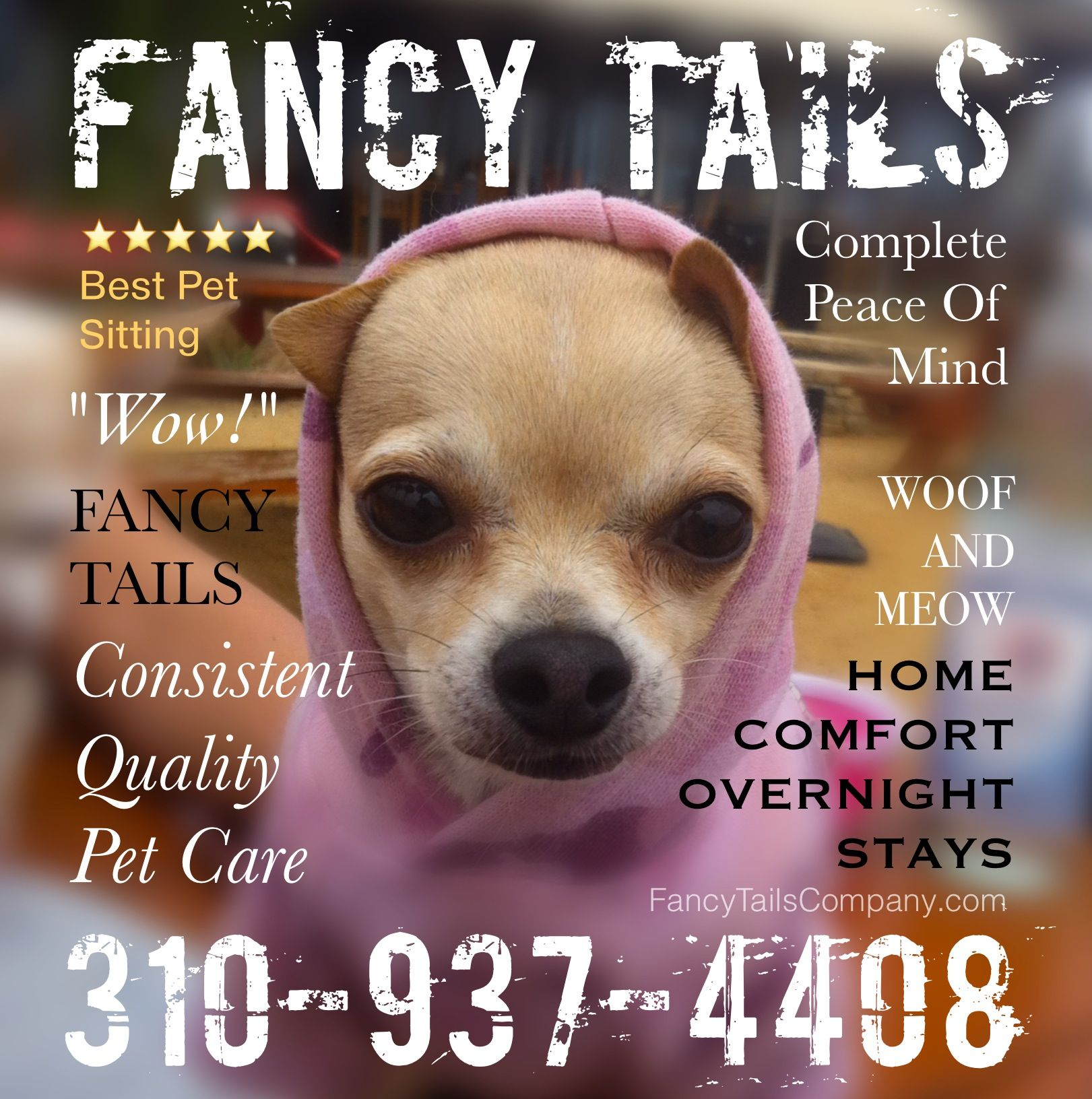 Posh Pampered Pups By Fancytailscompany Com Doggy Pup Peace Of Mind