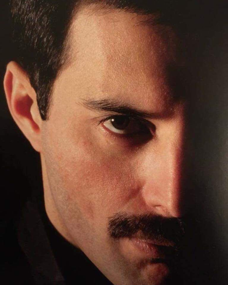 Queen S Photos 21 865 Photos Vk Queen Freddie Mercury Freddie Mercury Freddie Mercury Quotes