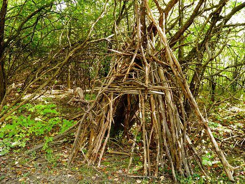 Stick Teepee Backyard Fort Teepee Tree Teepee