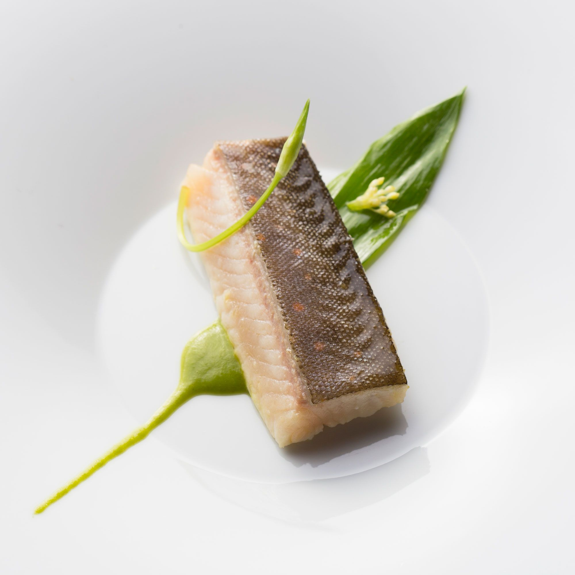 omble chevalier, crème d'ail des ours | cuisine - poisson | pinterest