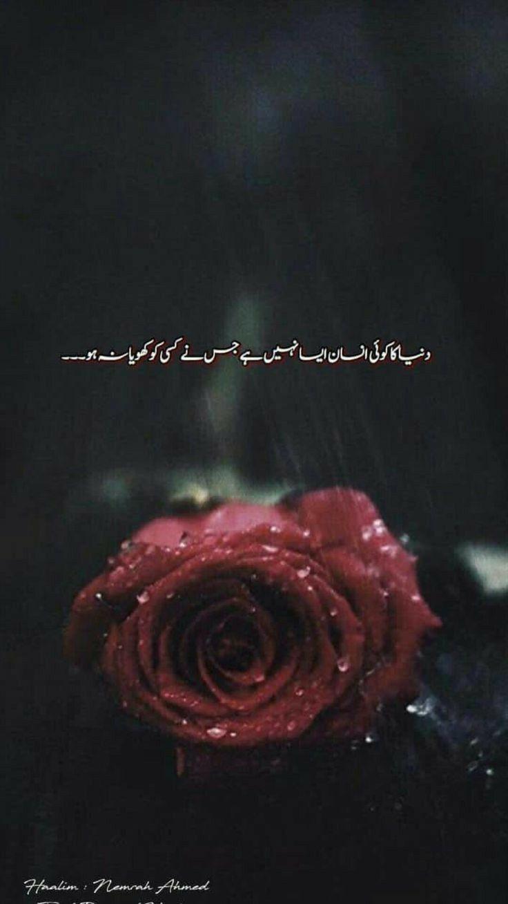 Har Kisi Ne Kisi Na Kisi Ko Khoya Hai Poetry Words Urdu Love Words Best Urdu Poetry Images