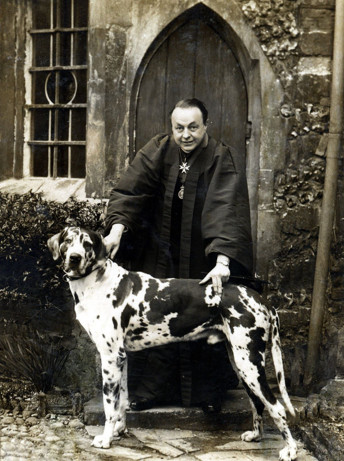Great Dane And Priest Photo On Dog Greetings Note Card Great