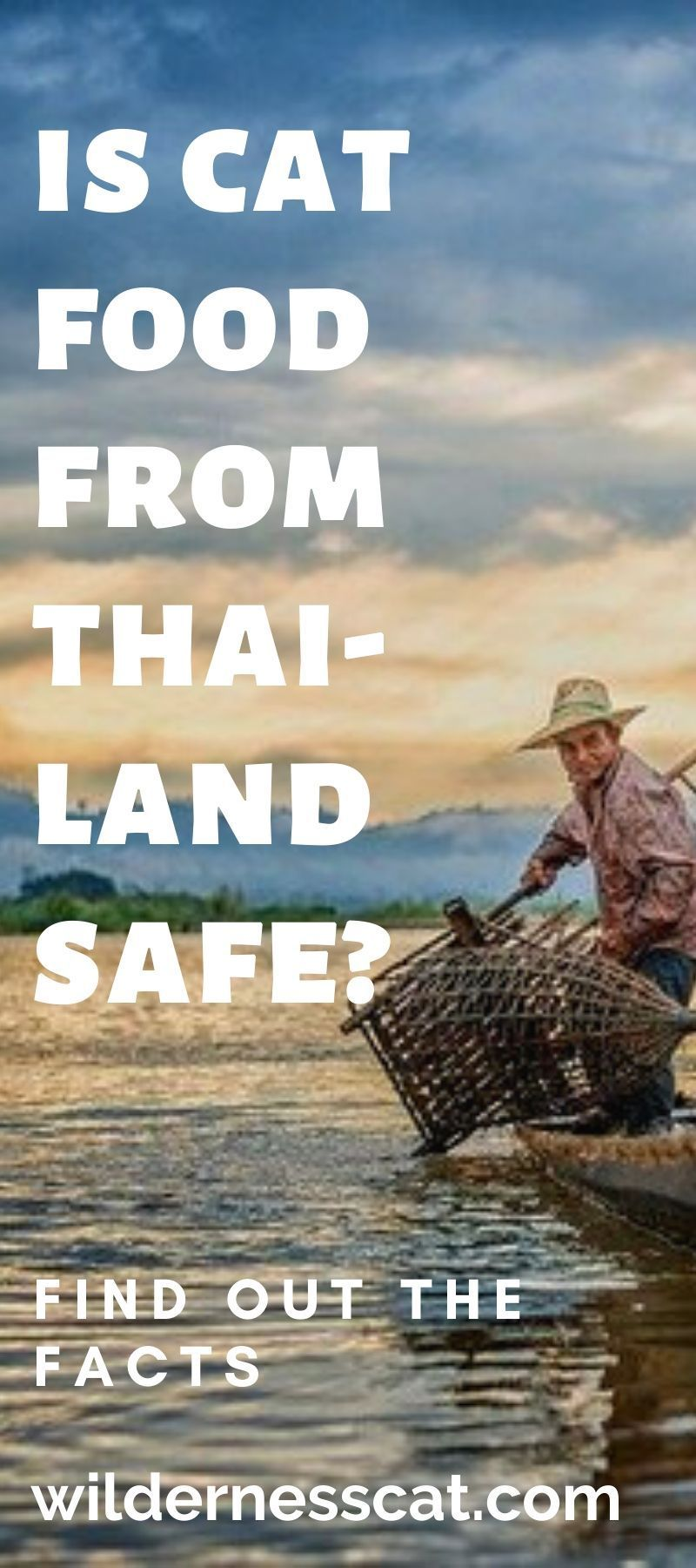 Is cat food from thailand safe wildernesscat in 2020