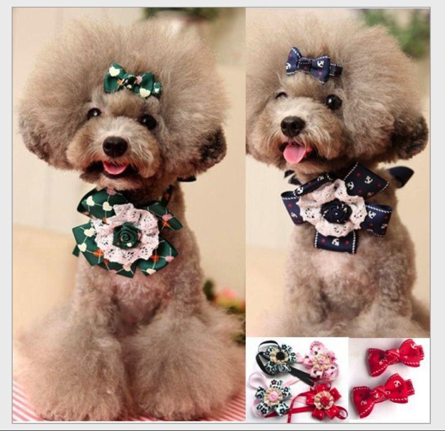 Top Dog Collar Bow Adorable Dog - 9dfd4b449c873b6ef9c33b8cb53b47a0  Pic_184711  .jpg