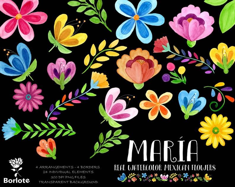 Mexican Watercolor Flower Clip Art Fiesta Mexicana Mexican Party Clipart Png Hand Painted Mexican Colorful In 2021 Flower Clipart Mexican Flowers Folk Art Flowers