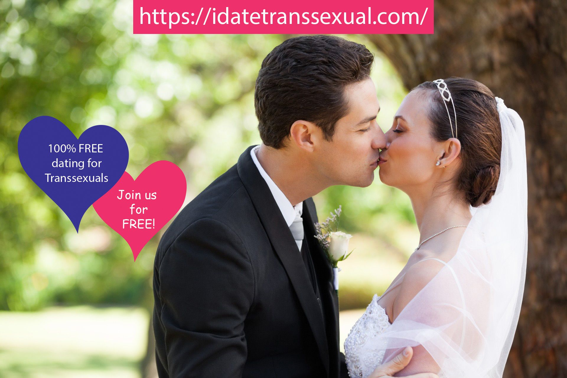 trans online dating