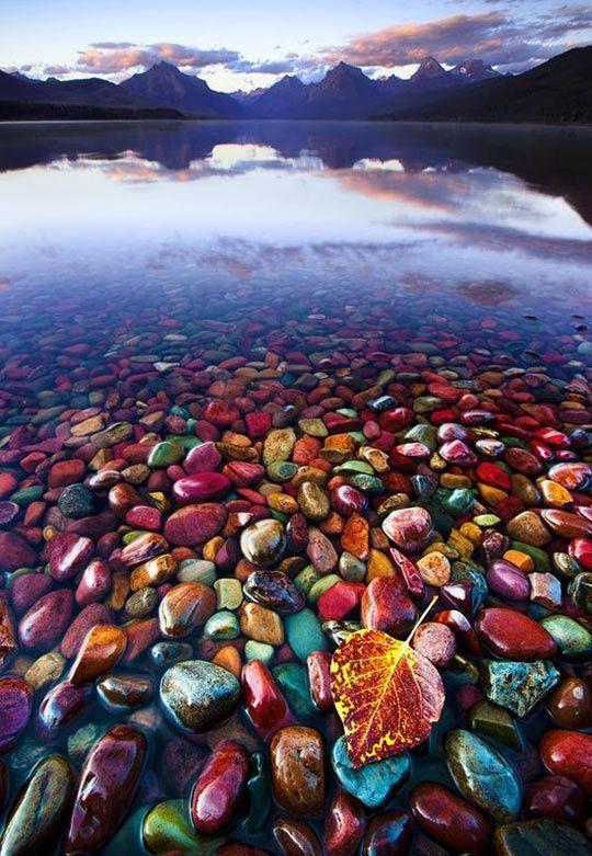 Piedras de colores en el lago del Glaciar - National Park, Montana