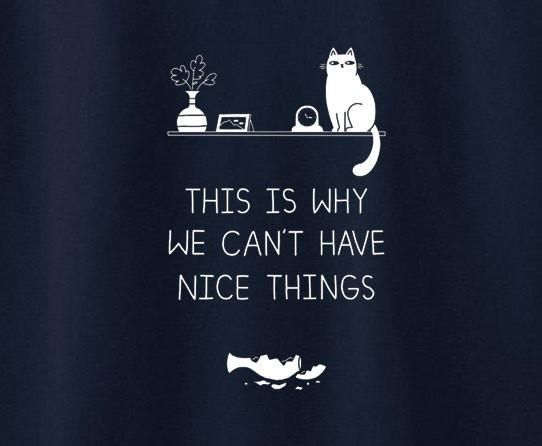 Cat Kitty Kitten This Is Why We Can T Have Nice Things Funny Cute Tee T Shirt Funny Cats