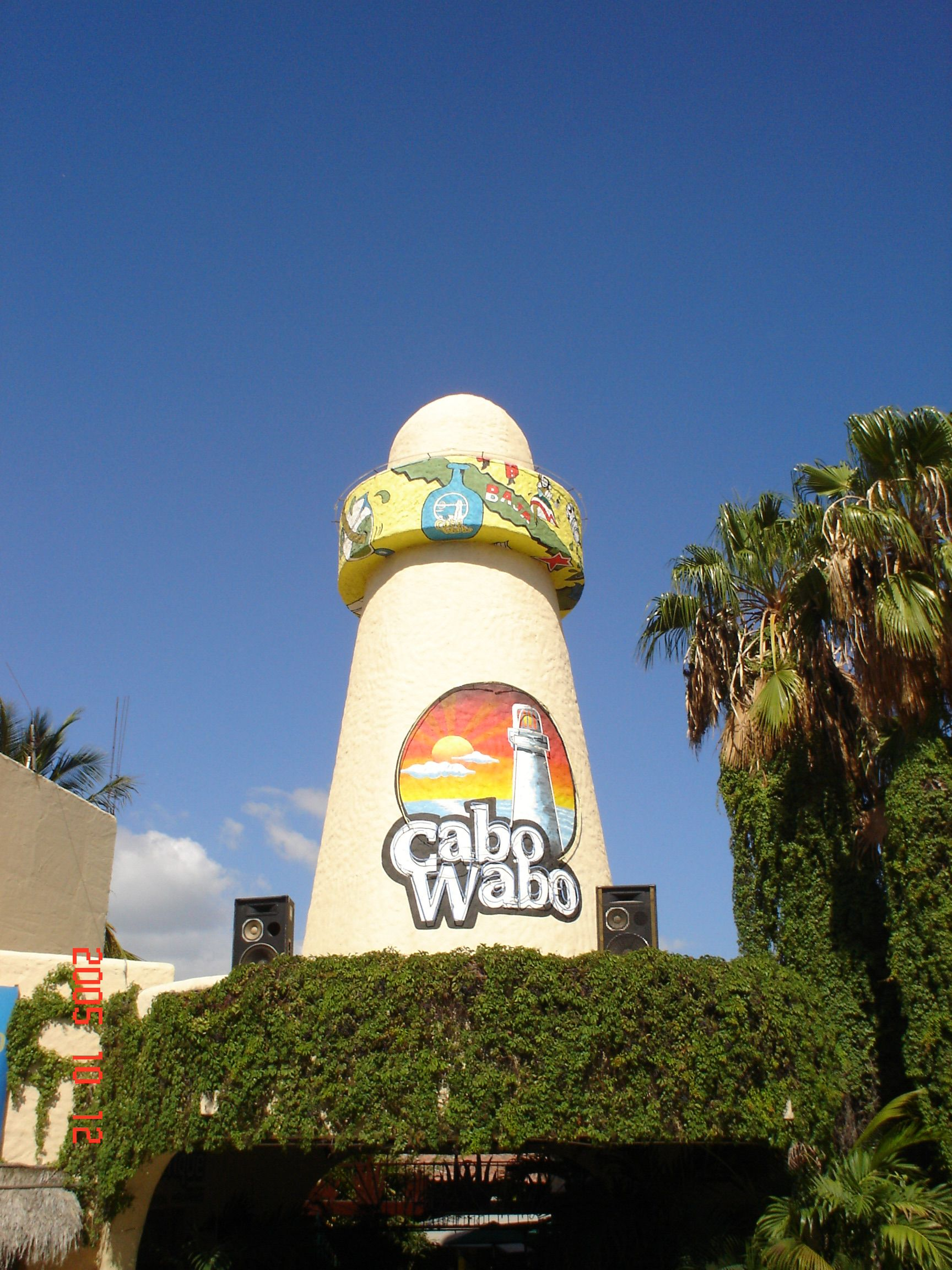 The Famous Cabo Wabo Cantina Run By Sammy Hagar Pretty Decent Food Cabo San Lucas Mexico Cabo San Lucas Cabo