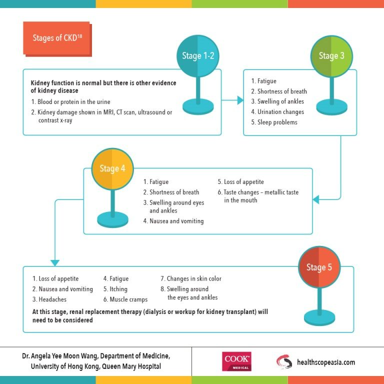 Chronic Kidney Disease (CKD) Infographic seriesHealthscope Asia