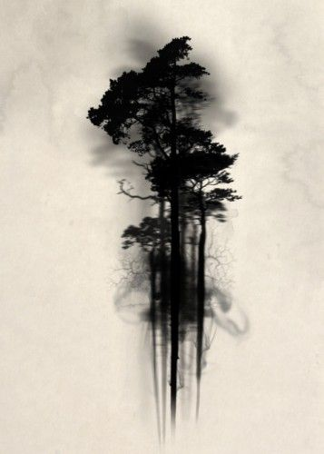 forest wood woods mist fog watercolor tree trees floating mystical enchanted magic horror scary Illustration
