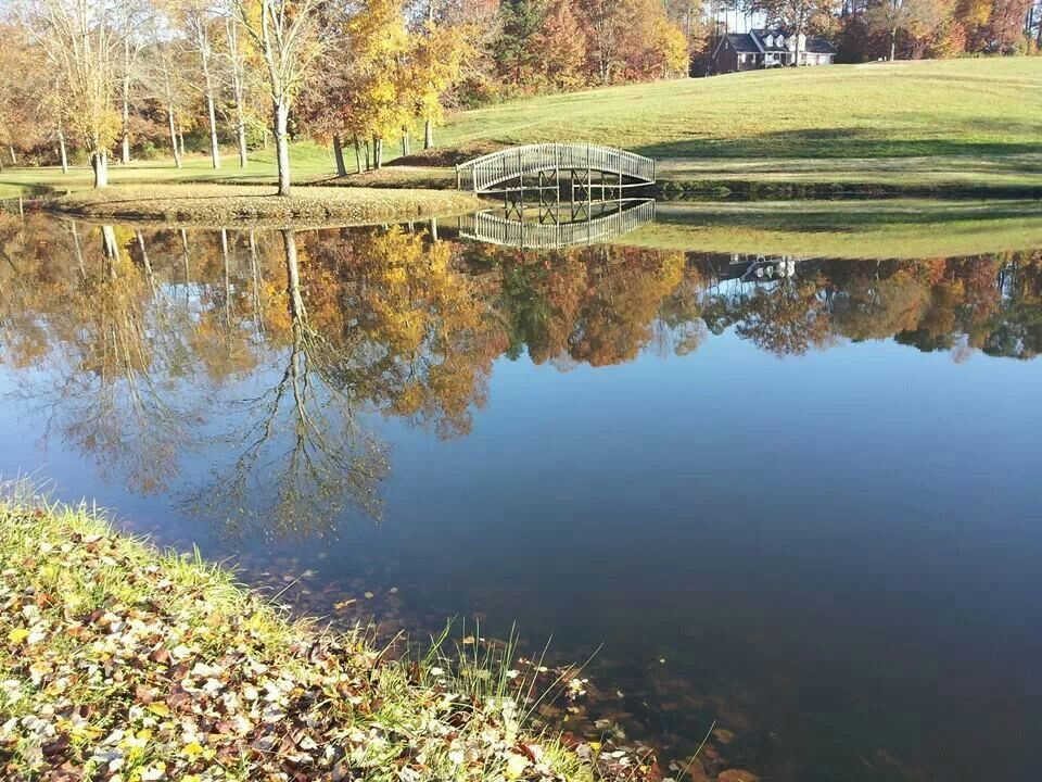 Pond At Homeplace Recreational Park Ararat NC Todays The Day Its