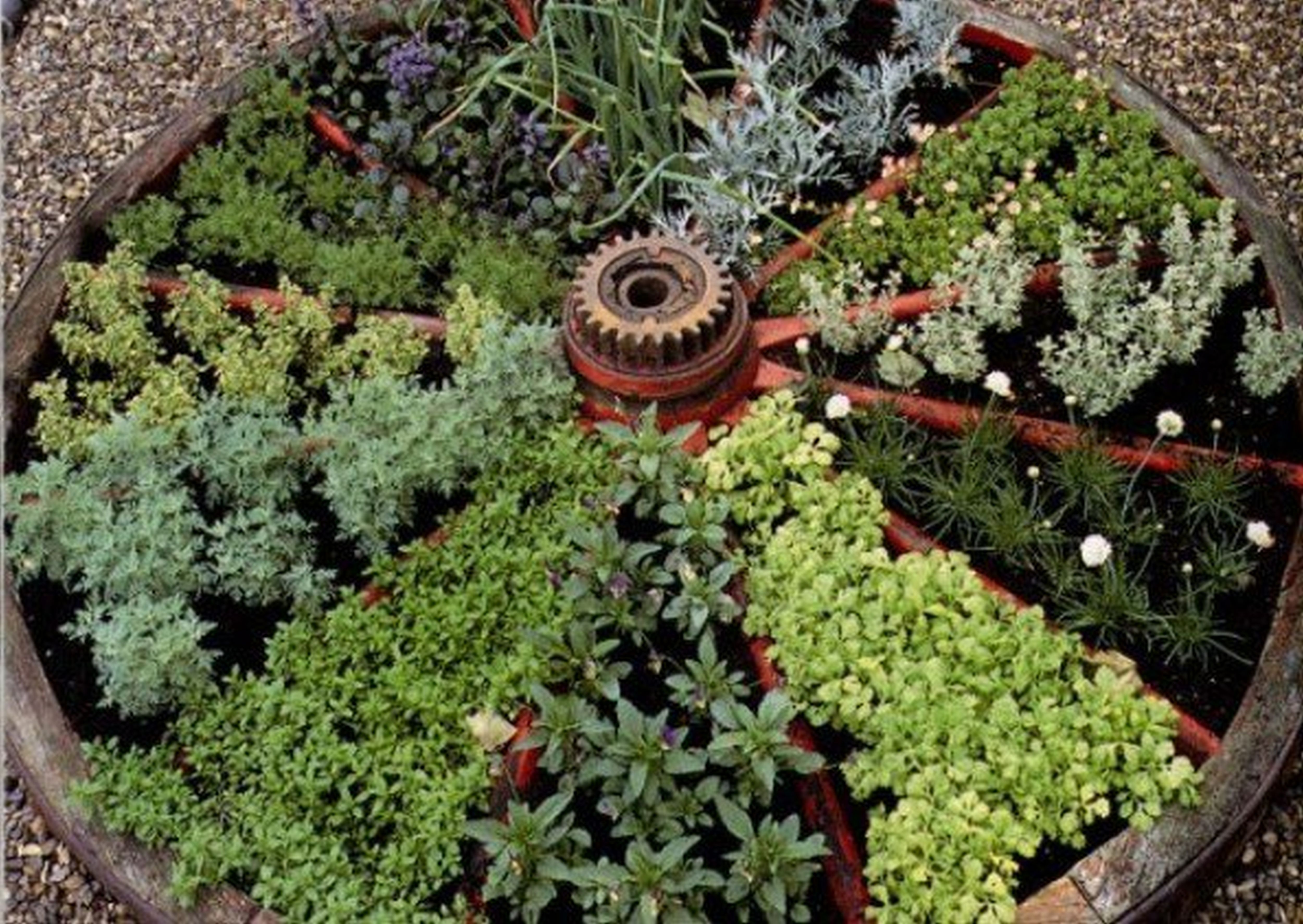 30 Herb Garden Ideas To Spice Up Your Life Doniczki 400 x 300