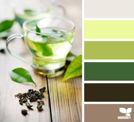 Green Tea Tones Color Palette