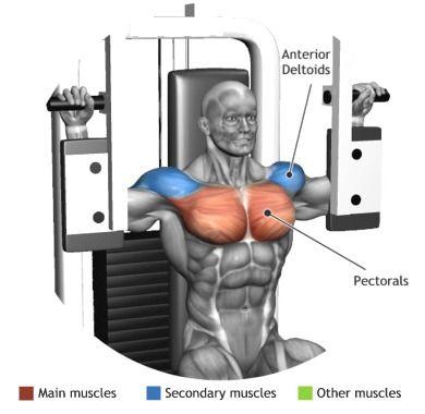 chest  pectoral machine  gym workouts gym machines
