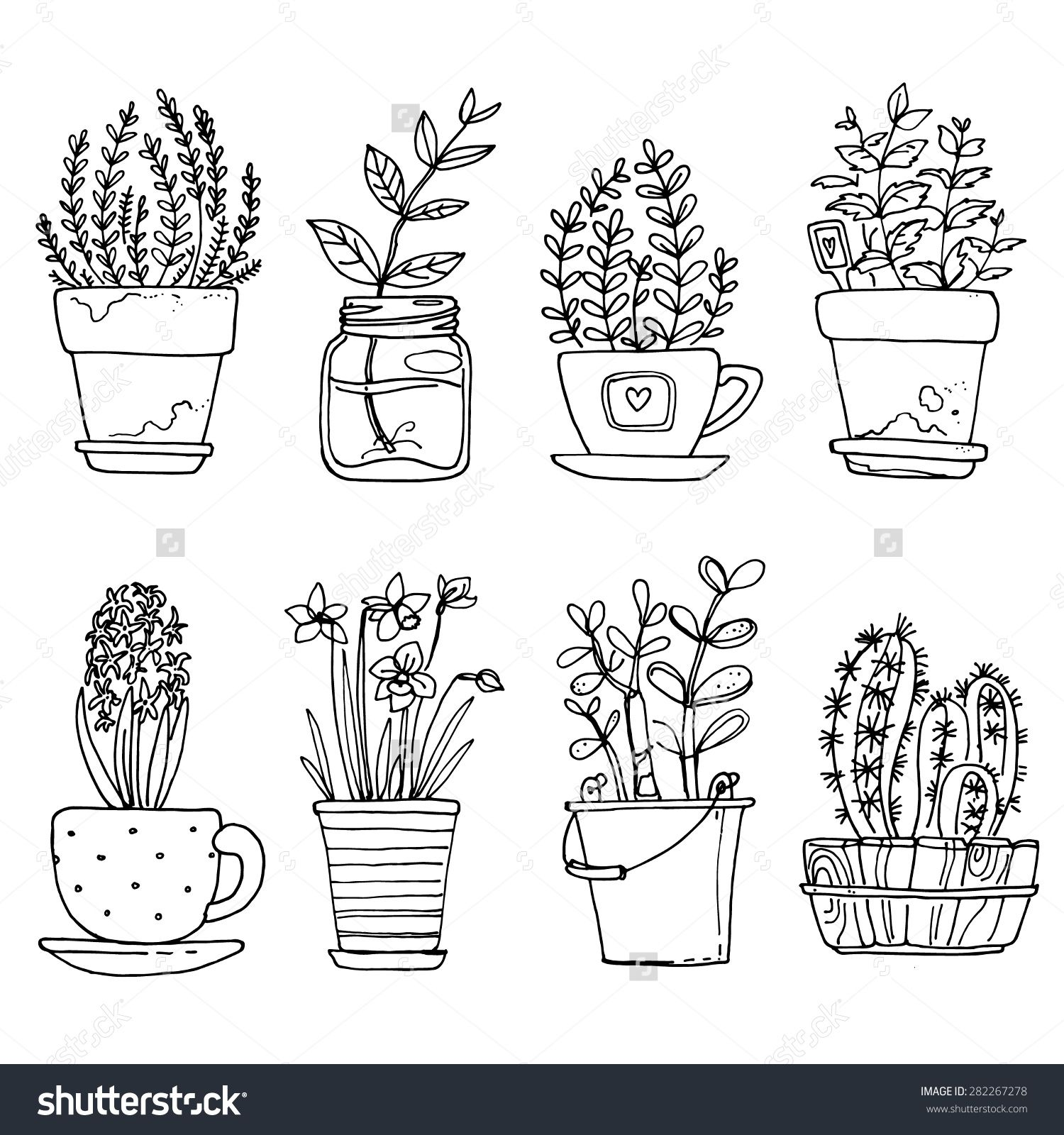 Flowers in pots painted black line on a white background