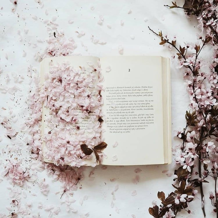 Aesthetic Literature Flowers Vintage Book Tumblr Reading Cute Photography Https Weheartit Com Entry Book Photography Book Aesthetic Book Wallpaper
