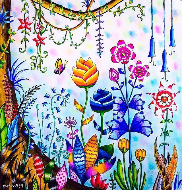 Adult Coloring Books Colored Pencils Enchanted Gel Pen Art Johanna Basford Secret Garden Color Pencil Drawings Jungle Naive