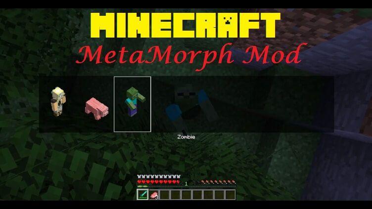 Metamorph Mod In 2021 Metamorph Shapeshifter Mod
