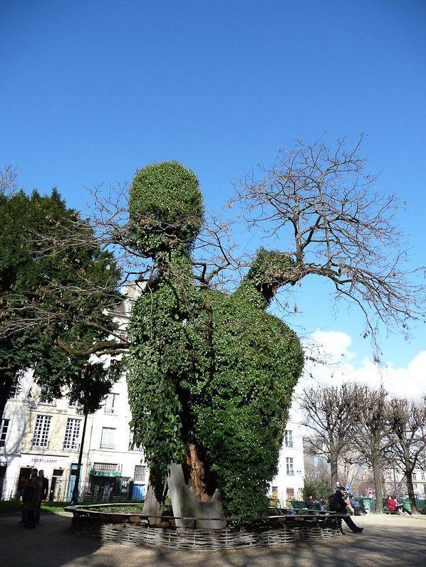 Le plus vieil arbre de Paris encore endormi http://www.pariscotejardin.fr/2014/02/le-plus-vieil-arbre-de-paris-encore-endormi/